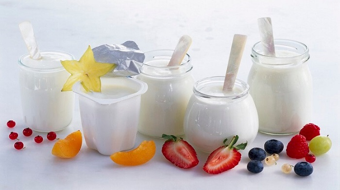 Sữa chua có đầy đủ thành phần dinh dưỡng của sữa, ngoài ra còn có thêm vi khuẩn có ích giúp cân bằng hệ vi khuẩn đường ruột, bảo vệ tiêu hóa, tăng cường hấp thu các chất dinh dưỡng.